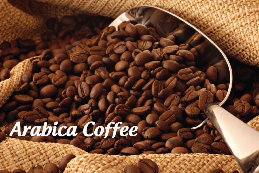 Arabica - Cà phê phổ biến